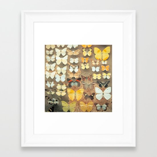The Butterfly Collection I Framed Art Print
