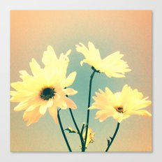 I Dream of Daisy Canvas Print