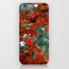 Red Tree on a Fall Morning iPhone 6 Slim Case