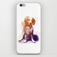 Junobeagle iPhone & iPod Skin