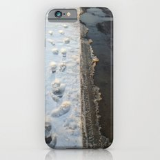 winter is gone? Slim Case iPhone 6s