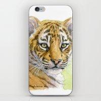 Tiger Cub portrait 815 iPhone & iPod Skin