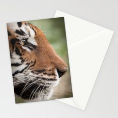 Tiger Portrait Stationery Cards