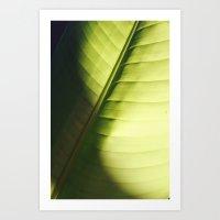 leaf macro Art Print