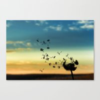Fly Fly... Canvas Print