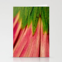 Petals Of Pink Stationery Cards