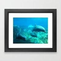 Under SeaWorld 2 Framed Art Print