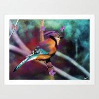 Paradise Bird Art Print