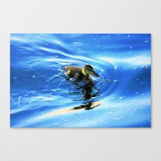 The Duckling Teenager  Canvas Print