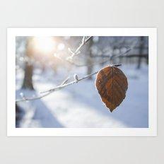 Frozen Beech leaf. Art Print