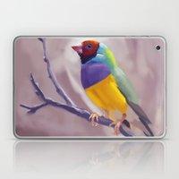 Gouldian Finch Laptop & iPad Skin