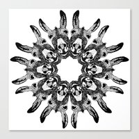 Donkey Kaleidoscope  Canvas Print