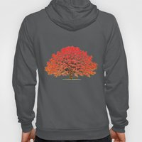 Japanese Maple 1 Hoody