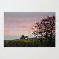 farm life Canvas Print