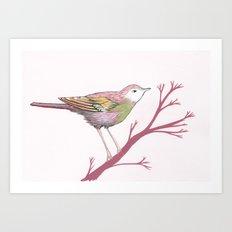 Peach Plum Pear Bird Art Print