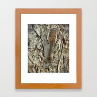 Nature Camouflage Framed Art Print