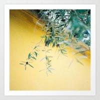 Olive Tree Art Print