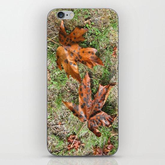 Fall Is Spot On iPhone & iPod Skin