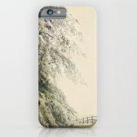 iPhone & iPod Case featuring Evergreen Ice by Jenn DiGuglielmo