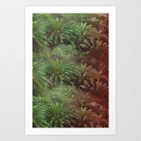 Canarian Jungle Art Print