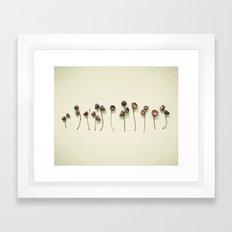 Acorn Collection Framed Art Print