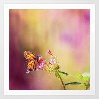 Monarch Rainbows Art Print