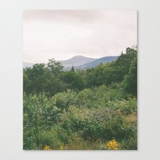 i'm just a flower among mountains Canvas Print
