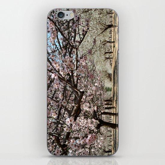 Almonds iPhone & iPod Skin