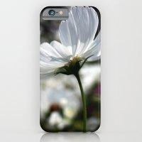 Spring Breeze iPhone 6 Slim Case