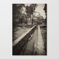The Stream Flows Canvas Print