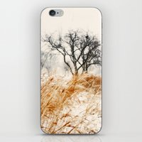 Winter Lanscape 2 iPhone & iPod Skin