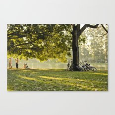 afternoon sun Canvas Print