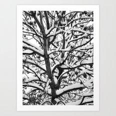 VENAL LIFE Art Print