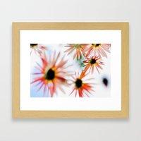 Happie (Daisies) Framed Art Print