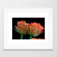 My Mothers Day Roses Framed Art Print