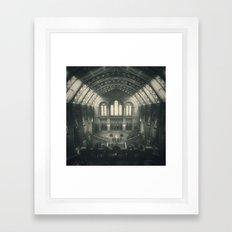 London - Natural History Museum Framed Art Print