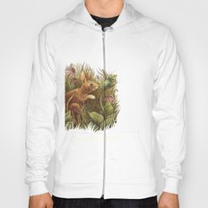 The Cottontail and the Katydid Hoody