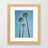 Three Palms Framed Art Print
