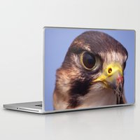 Laptop & iPad Skin featuring Lanner Falcon by Serenity Photography