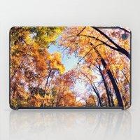 Fisheye Fall  iPad Case
