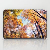 Fisheye Fall  iPad Case