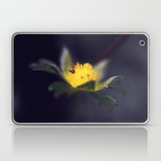Strawberry Blooms in December Laptop & iPad Skin