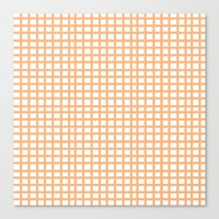 LINES In APRICOT Canvas Print