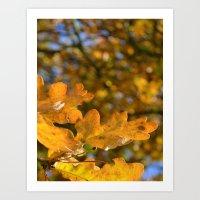 Yellow Oak Leaves Art Print