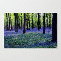 drowning in the bluebell sea Canvas Print