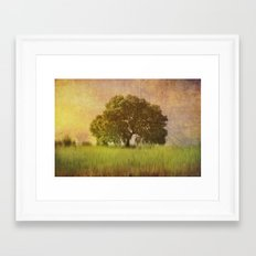 Lonely tree.II Framed Art Print