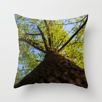 Upward to the canopy Throw Pillow