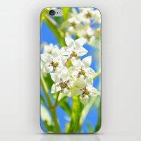Bright Blossom Sky iPhone & iPod Skin