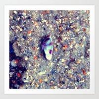 Shell Life Art Print