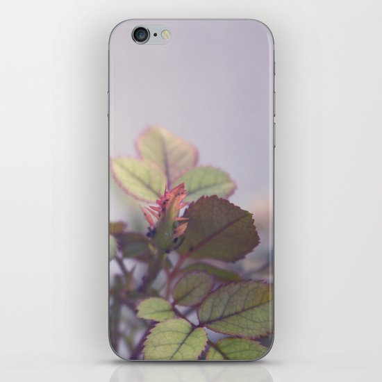In The Wee Small Hours iPhone & iPod Skin